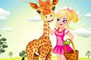 Play Animal Pal